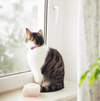 Окна Multi. Защита от жары и холода.